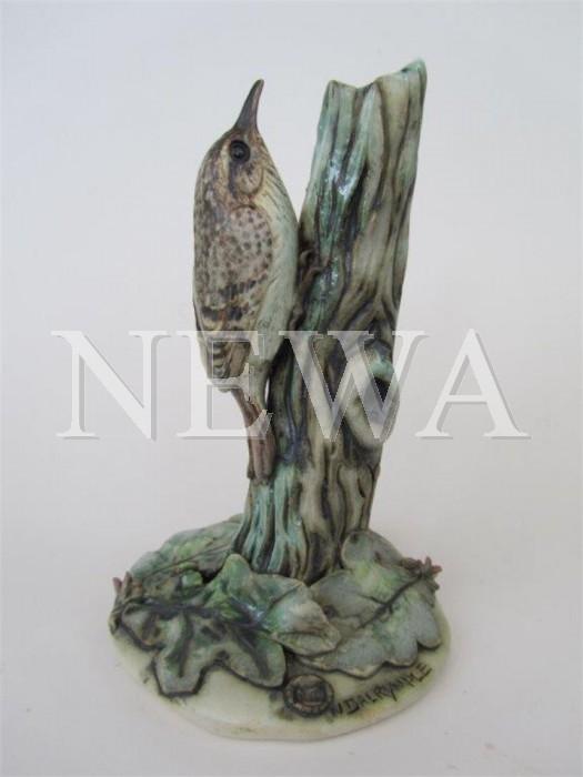Tree Creeper by Neil Dalrymple