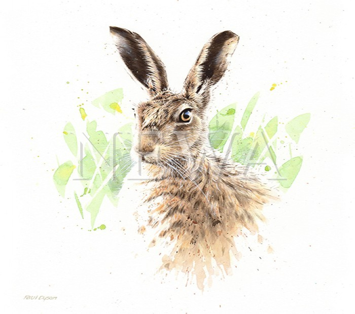 March Hare (brown Hare) by Paul Dyson