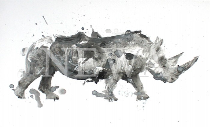 Rhino by Ben Ark