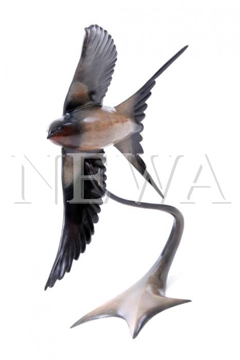 Barn Swallow In Flight by Andrew Glasby