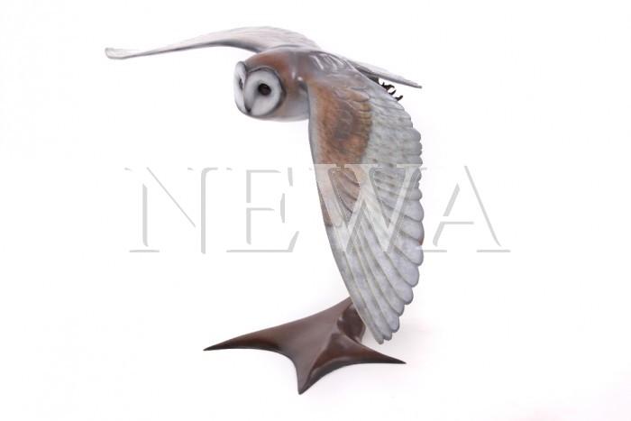 Barn Owl In Flight by Andrew Glasby
