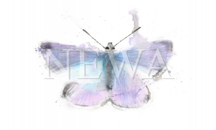 Butterfly by Ben Ark