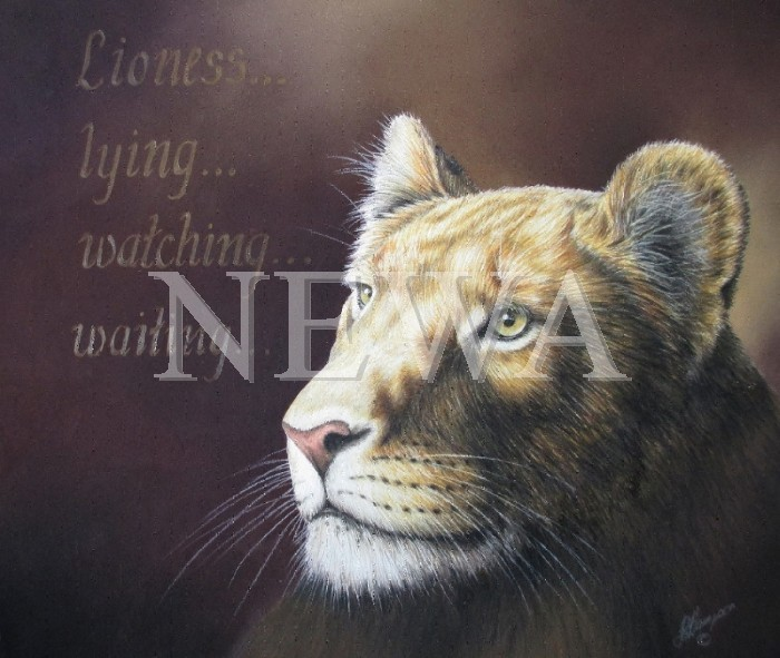 Lioness by Linda Hampson