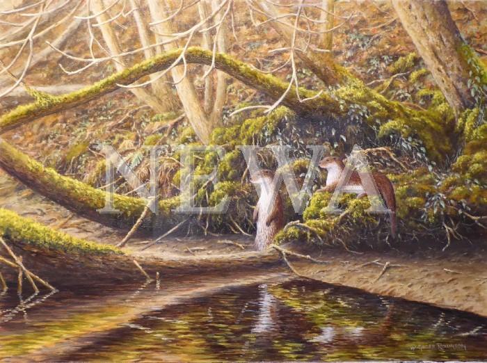 Autumn Otters by W. Geoff Rollinson