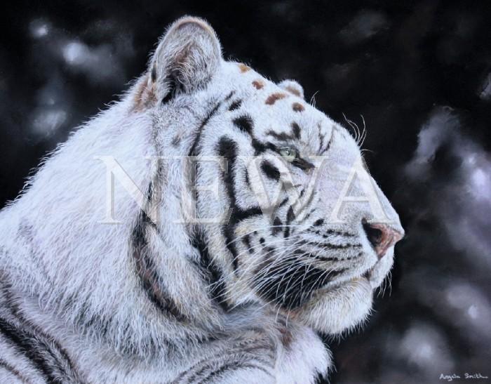 White Spirit by Angela May Smith