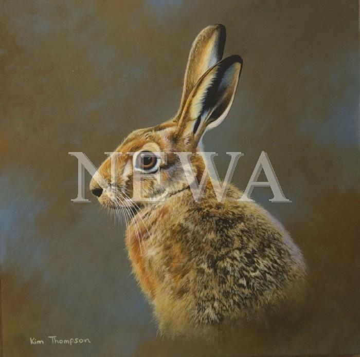 Hare Portrait by Kim Thompson