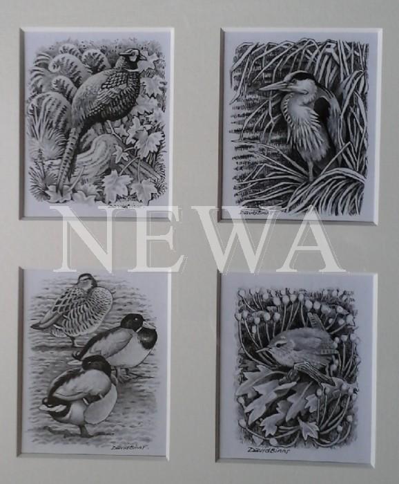 Quartet Of Birds by David Binns
