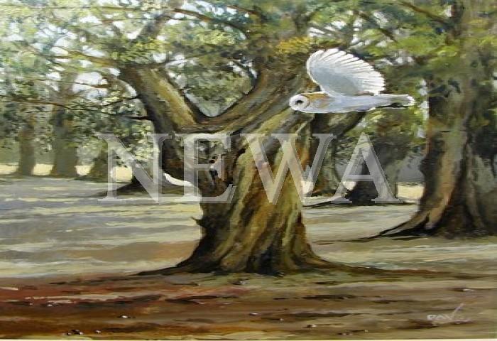 Silent Hunter by David Wilson