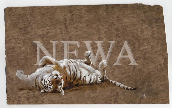 Rolling Tiger by Martin Buffery