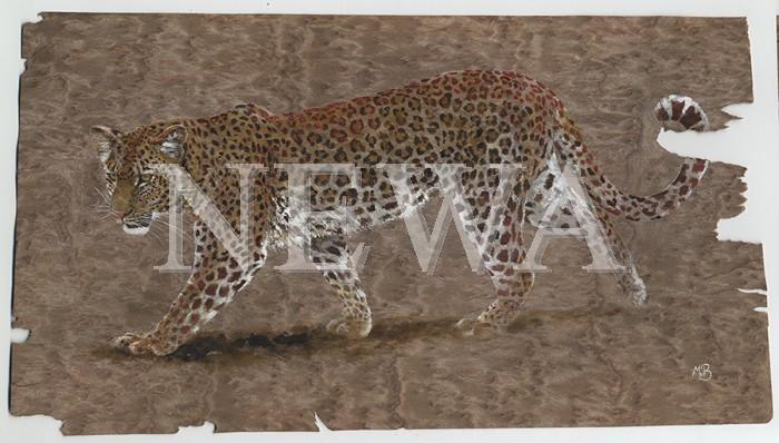 Leopard On The Edge by Martin Buffery