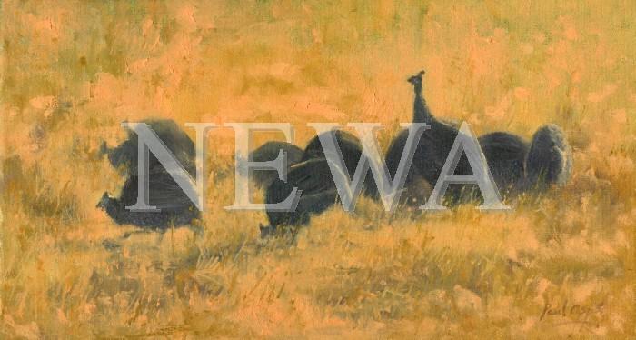 Guinea Fowl by Paul Apps