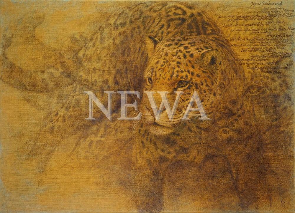 Jaguar by Cy Baker