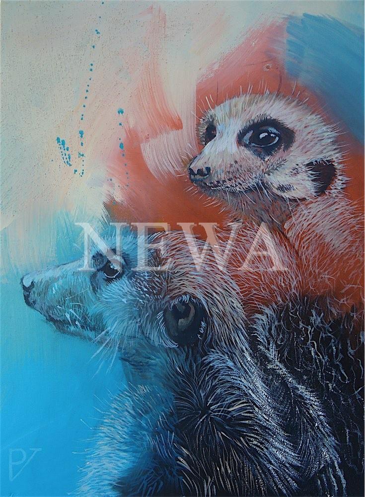Meerkat 2 by Petra Verlooij