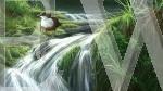 Dipper Falls by Jeremy Paul