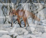 Winter Fox by David Binns